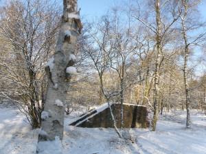Groepsschuilplaats in De Fransche Kamp